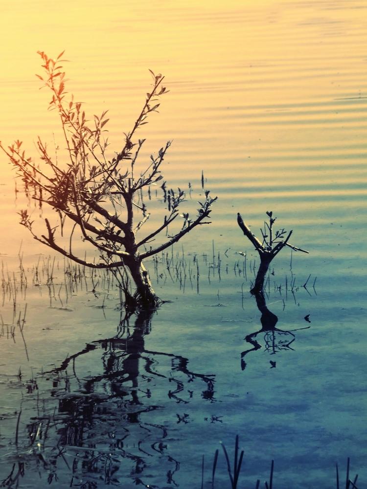 Voyager entre ciel et terre dans l'eau paisible