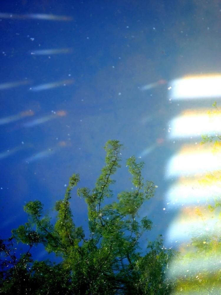 Les rayons de lumière s