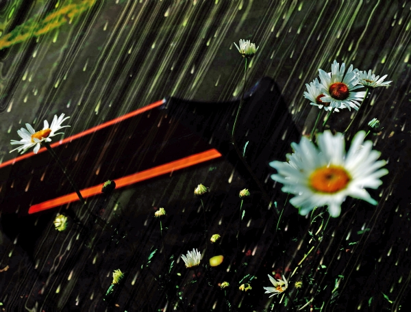 Florissante sous une douce pluie verdoyante...