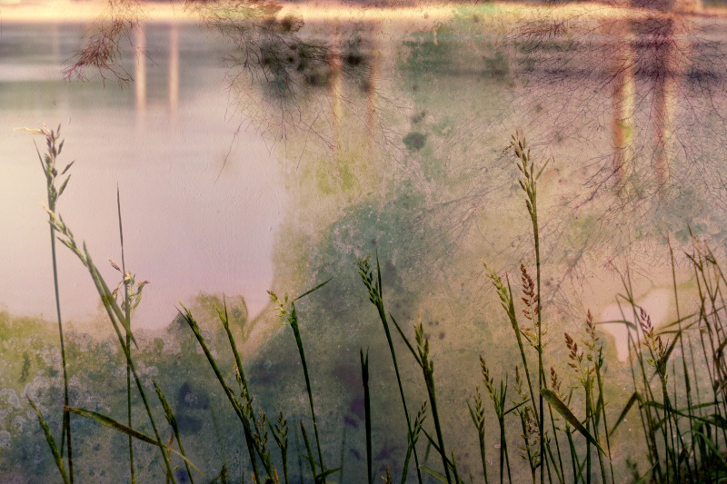 Construire le reflet pont végétal...