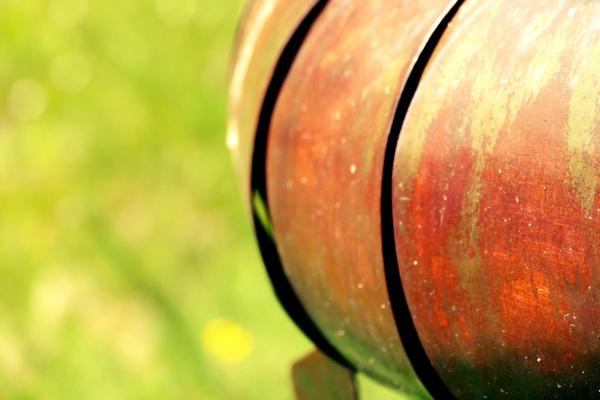 Le métal cuivré qui rouille dans la verdure dorée