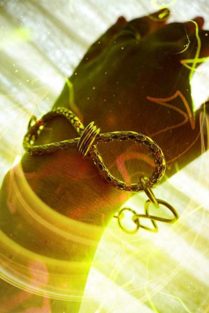 Bracelet serpente dans la nature infinie d'énergie