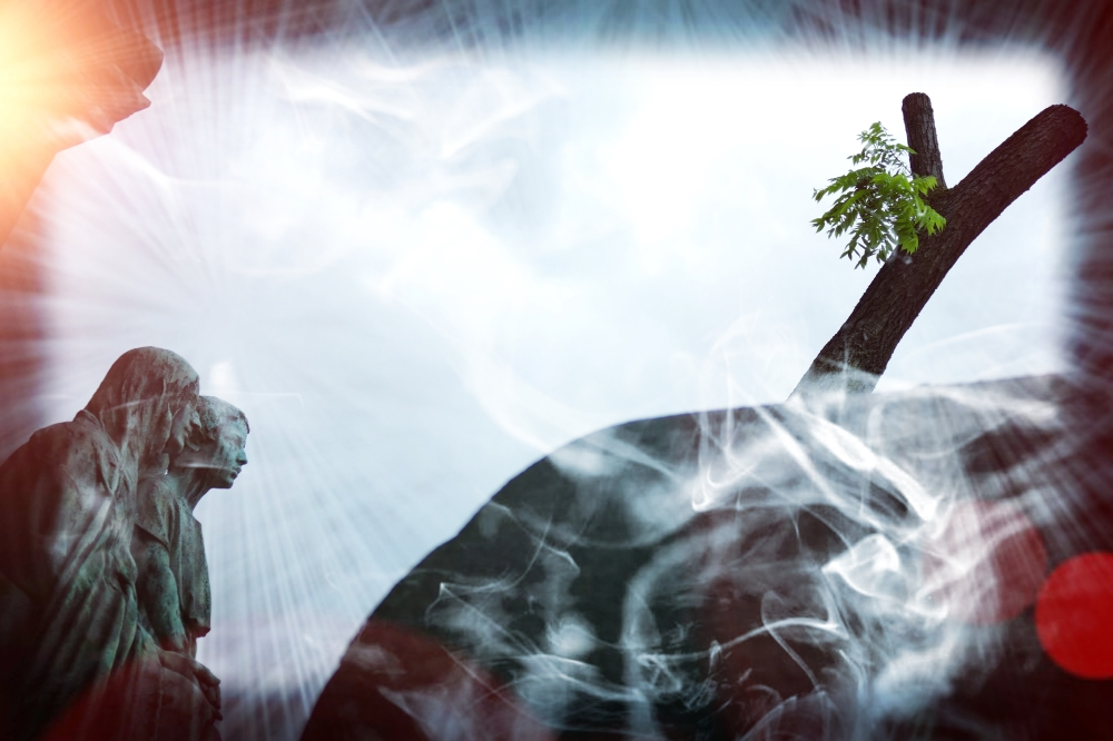 Fumer la vie avant qu'elle vous fume...