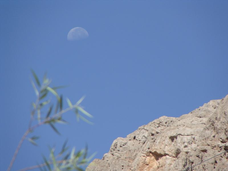 روی ماه ماه
