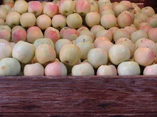 سیب های بازار