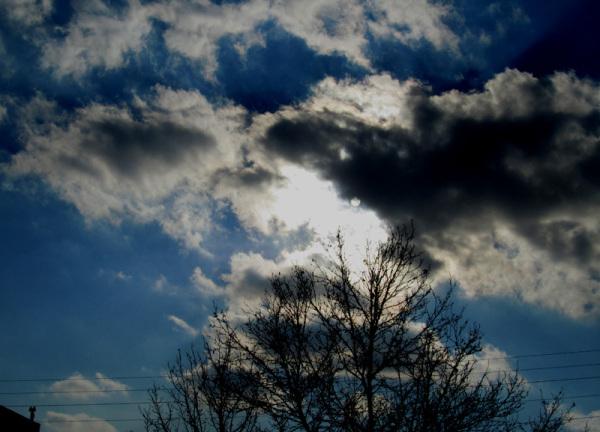 the Sun of Winter