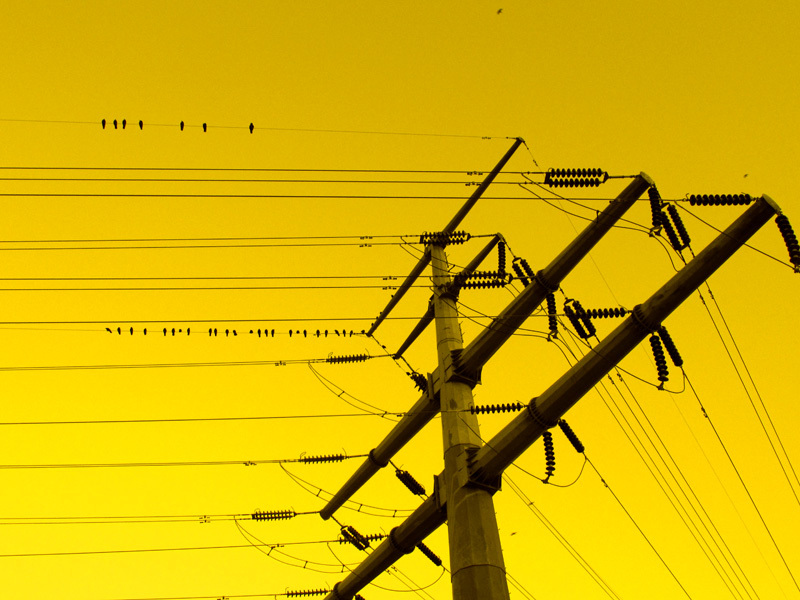 Crow Transmission Cables !