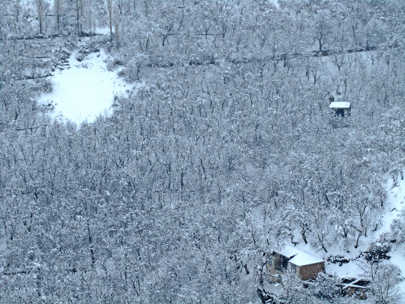 Snowy view 2/3 ( The sun of snow )