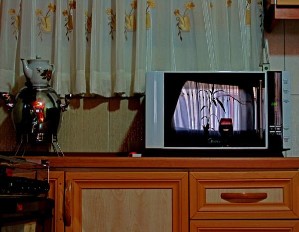 Microwave Show (1)