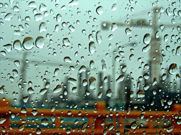 The Rain of Cranes