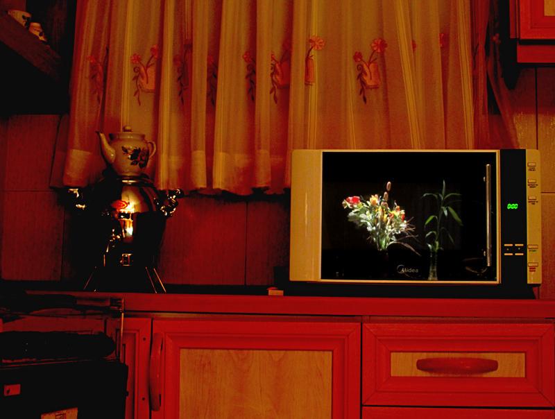 Microwave Show (2)