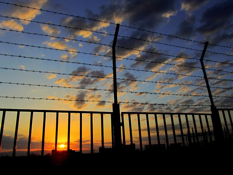 Dawn of Freedom
