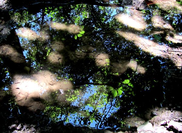 Reflection World - 17
