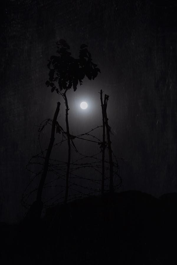 Confabulation with Moon