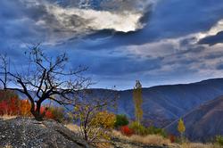 zoshk autumn