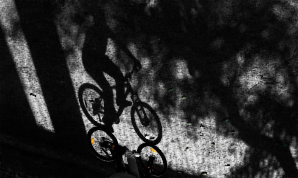 """The Cyclist"""