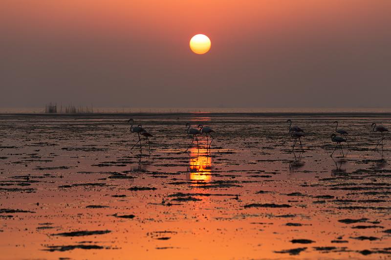 Walking at sunset **