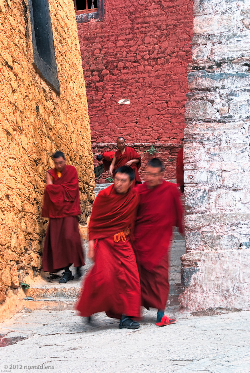 Monks, Ganden, U, Tibet