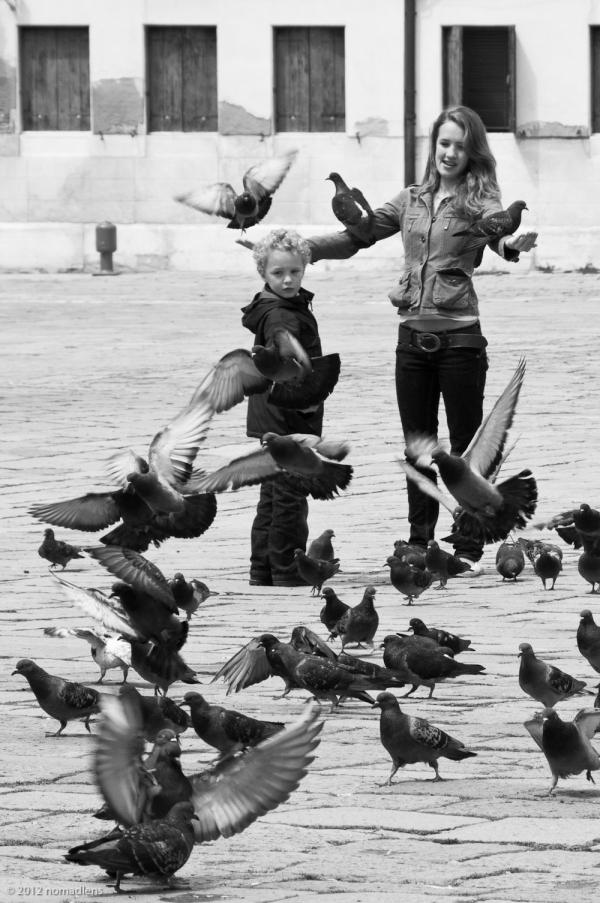 Feeding the Pigeons, Dorsudoro, Venice, Italy