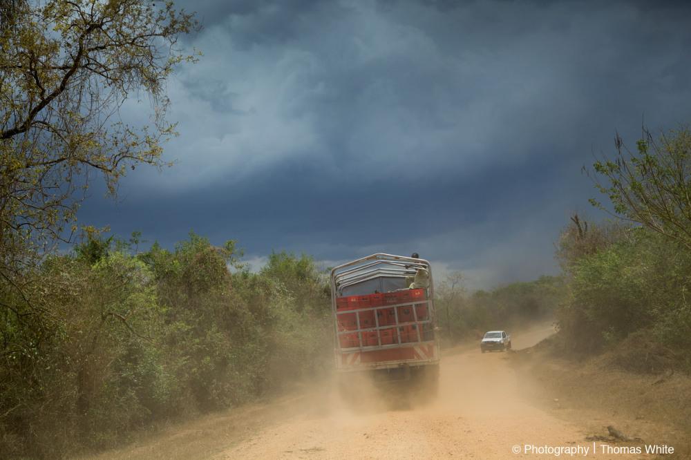 Hoima Roads II