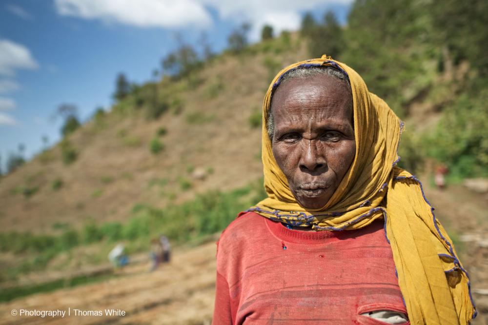 Gemechis, Ethiopia IV