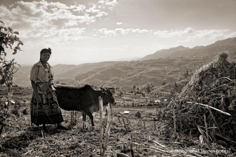Gemechis, Ethiopia XXII