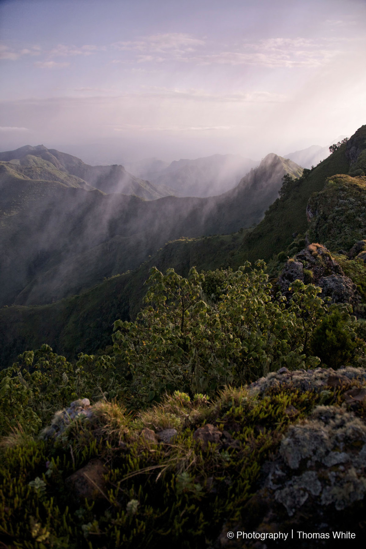Hike up Mt Moroto XV