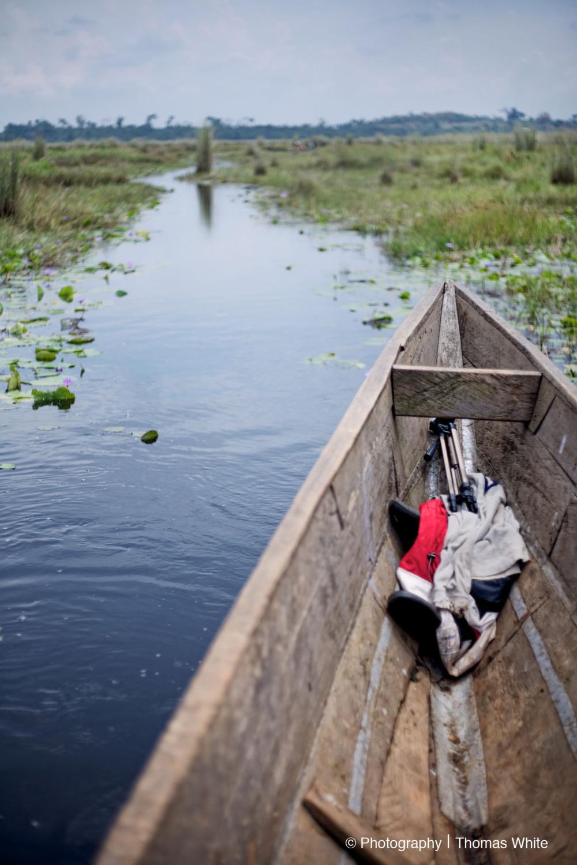 Exploring Mabamba Swamp