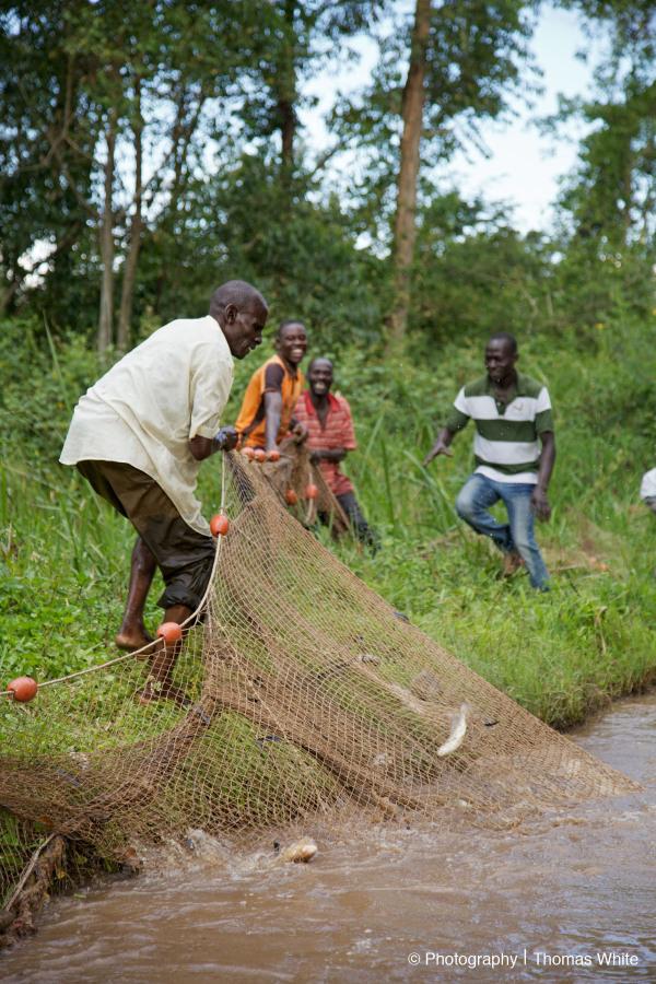 Masindi VI - Fishing