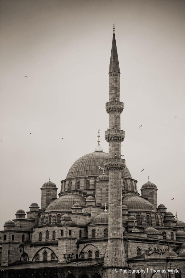 Istanbul VI