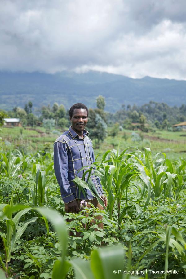 The MasterCard Foundation, Rwanda, TechnoServe IV
