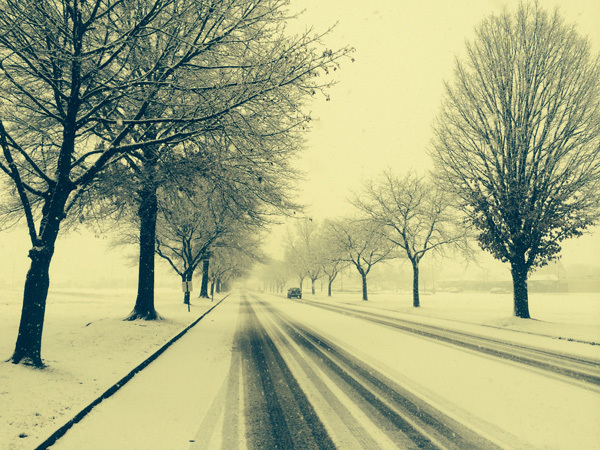 First snow of the season II