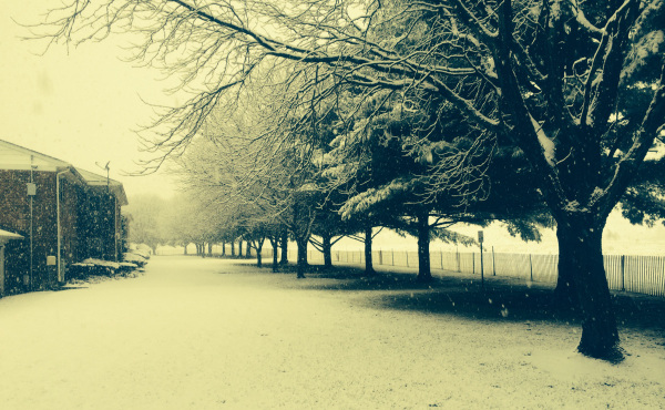 First snow of the season III