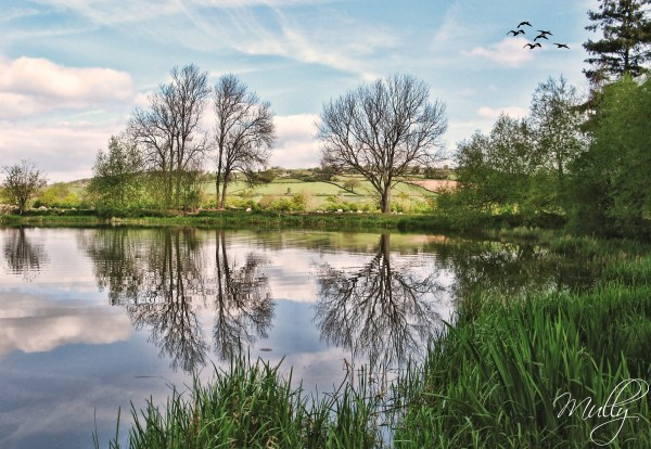 dderw farm lake in powys