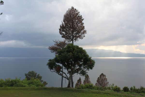 Scenery on The Hill Beside The Lake Toba