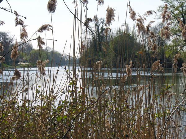France, la rivière le Loiret.