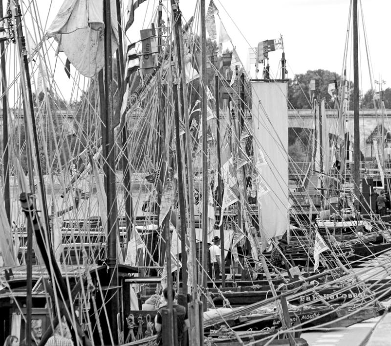 Marine à voiles sur la Loire