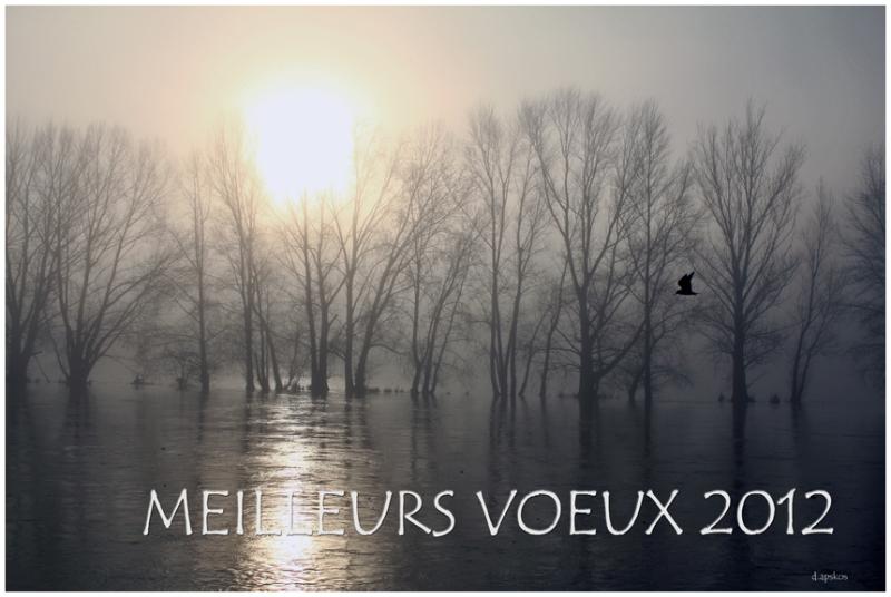 .... Meilleurs voeux 2012 ....