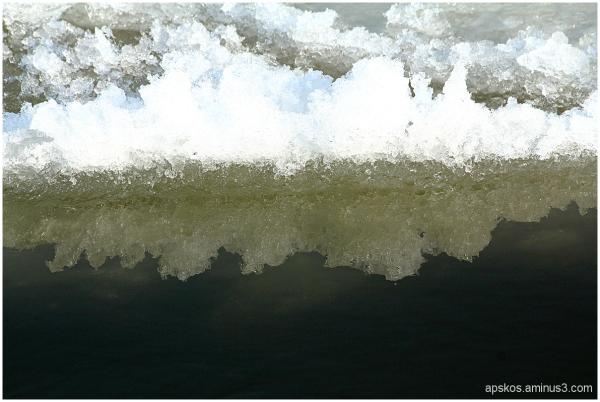 La Loire, un hiver... (7)