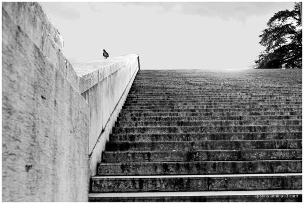Escaliers de pierres...