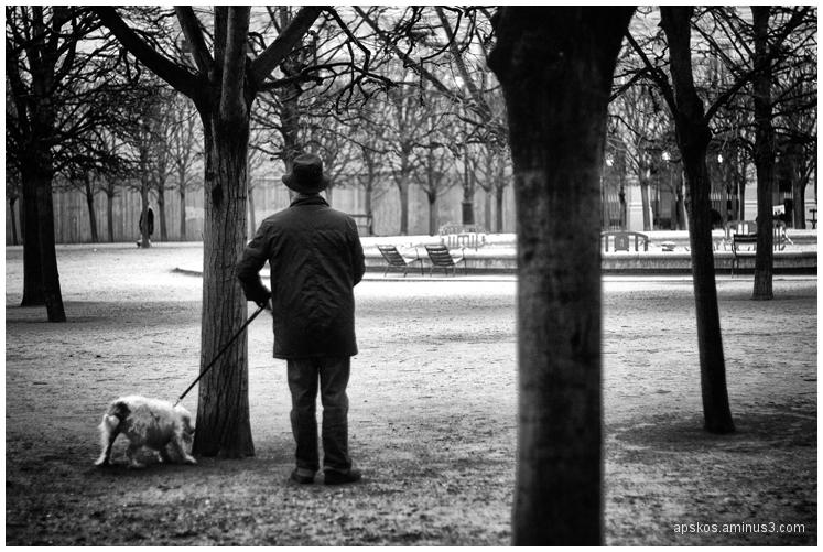 Paris, jardin des Tuileries, jour de Toussaint.