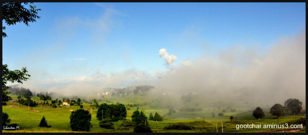 Brume du petit matin...