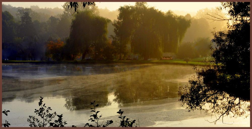 Brume matinale...