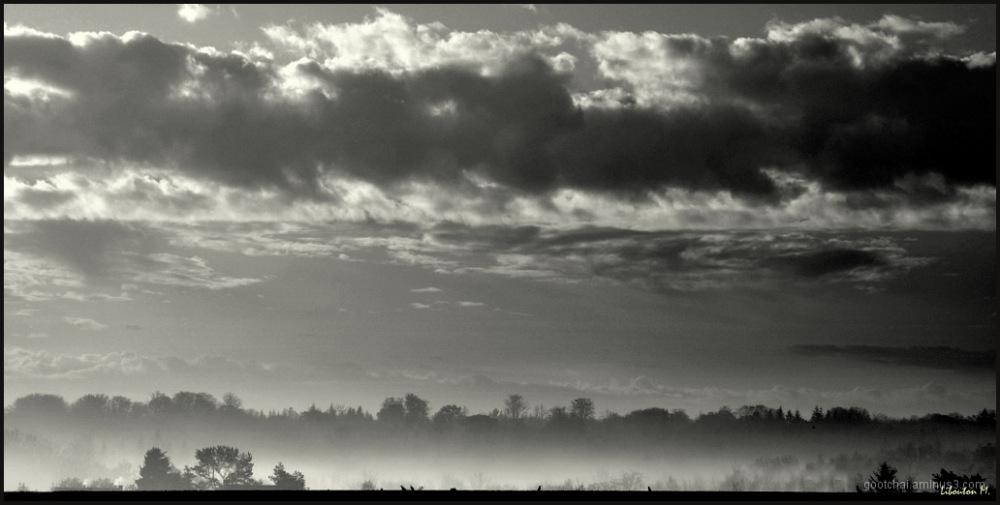 La brume se faufille...