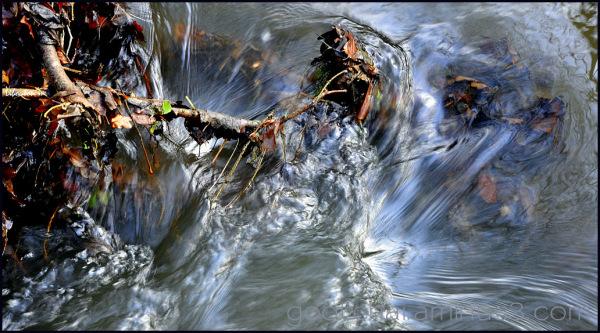 L'eau n'oublie pas son chemin!