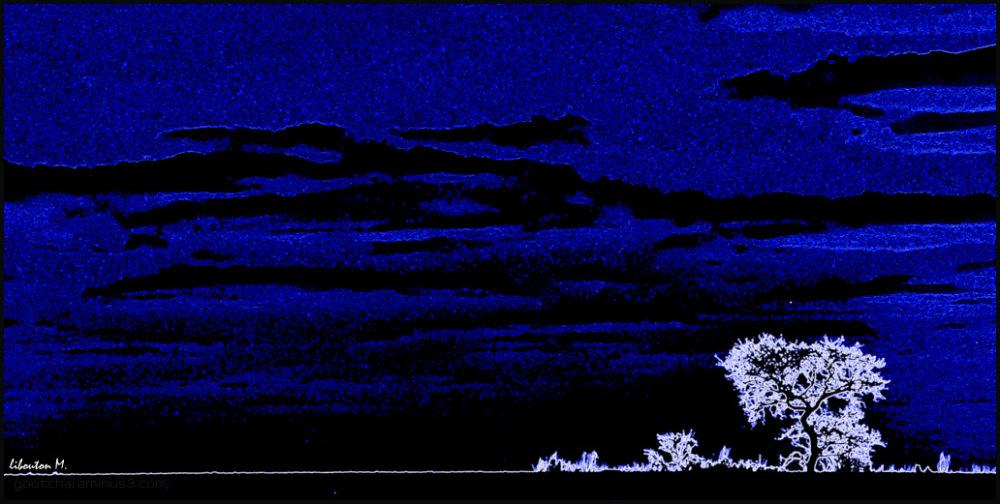 Nuit bleue.
