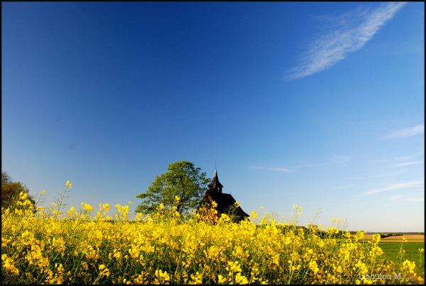 Ma chapelle...de jaune vetue.