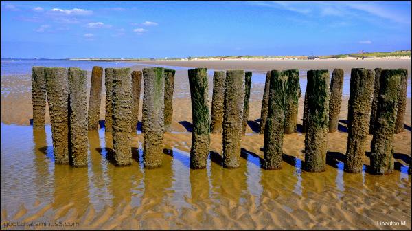 A marée basse.