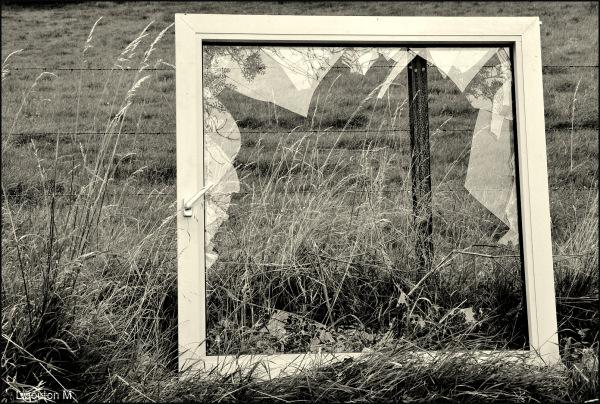 Fenêtre sur .....Prairie!!!!