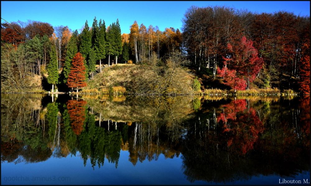 Quand l'automne se fait reflet....